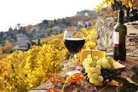 """Două tinere pariază pe turismul vinicol """"În doi-trei ani va înflori"""""""