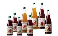 Au creat un brand de sucuri naturale şi încearcă să ajungă pe rafturile hipermarketurilor din ţară