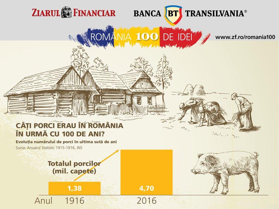 Câţi porci erau în România acum o sută de ani?