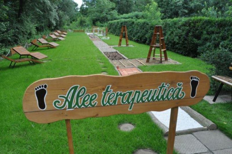 Grădină Senzorială în care oamenii pot păşi desculţi, experimentând adevărate terapii de relaxare. Proiectul este unic în România