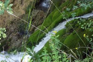 Această cascadă din apropiere de Timişoara ar putea-o detrona pe celebra Bigăr. Imagini SPECTACULOASE