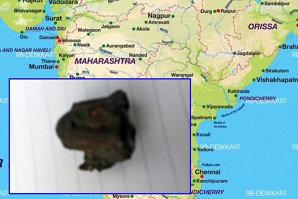 Un bărbat a murit lovit de un meteorit în India