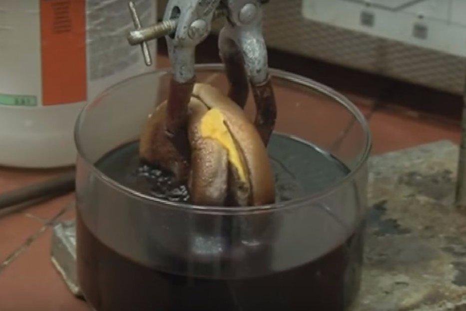 Ce se întâmplă dacă pui un cheeseburger în acid hidrocloric. VIDEO