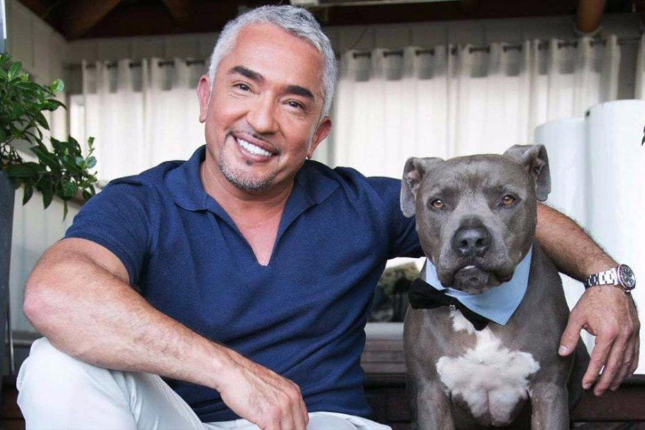Cesar Millan vine pentru prima oară în România. Care sunt pretenţiile celui mai cunoscut antrenor canin
