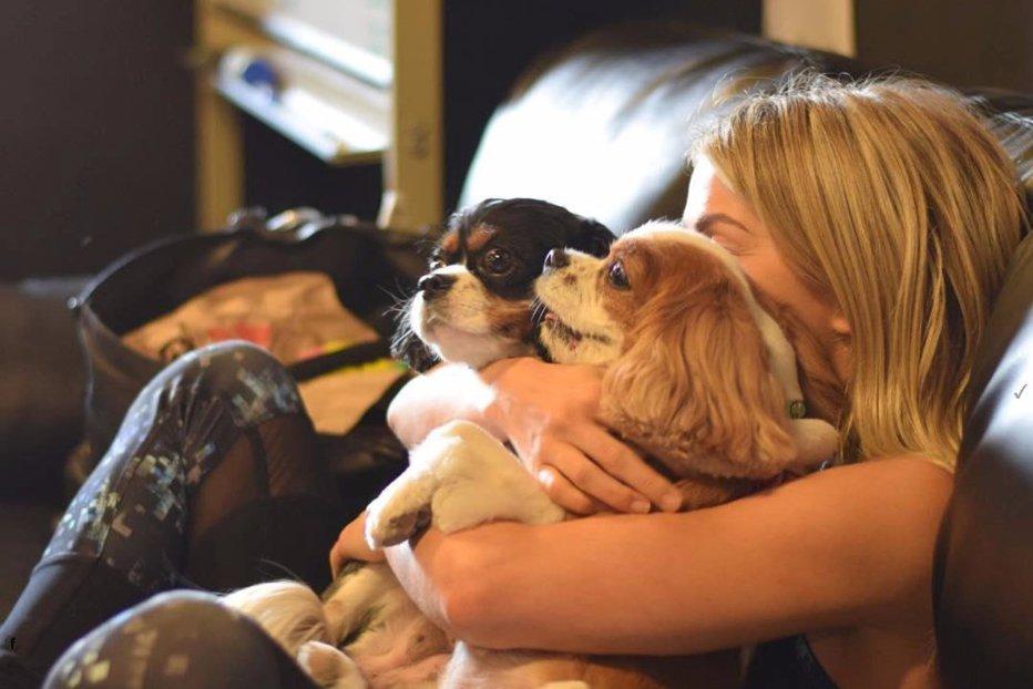 Câinii au capacitatea de a comunica cu oamenii. Cine îi înţelege mai bine
