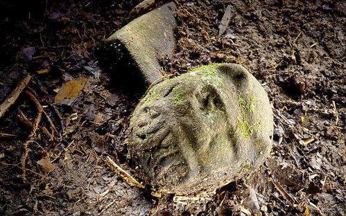 Descoperire unică a cercetătorilor: cea mai veche brăţară din lume NU a fost realizază de strămoşii cunoscuţi ai oamenilor, ci de o altă creatură controversată