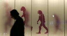 """Descoperirea unică în Europa a paleontologilor germani care ar putea rescrie istoria întregii omeniri: """"Este un noroc incredibil, dar şi un mister enorm"""