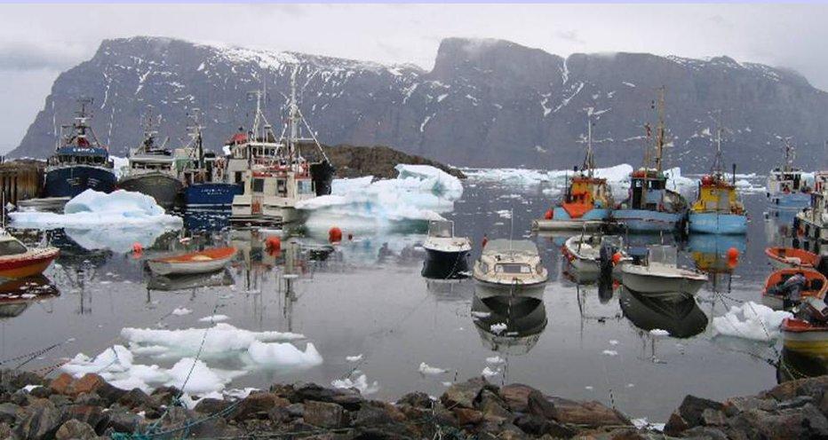 Un tânăr a cerut, prin email, guvernului danez să-i dea lui Groenlanda. Răspunsul-surpriză pe care l-a primit