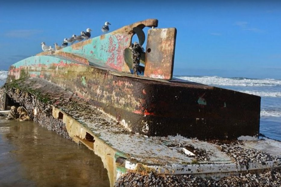 """O navă-fantomă, dispărută după tsunamiul din 2011, descoperită pe coasta SUA. Ce """"încărcătură"""" preţioasă avea"""