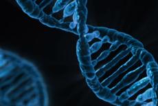 Cele mai comune trăsături umane despre care nu ştim că sunt, de fapt, mutaţii genetice