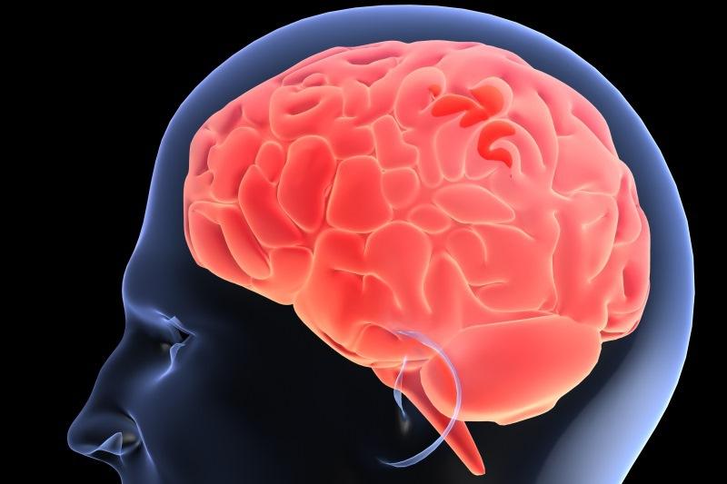"""Ce se întâmplă în creierul omului în primele cinci minute după moarte. """"Este o descoperire fundamentală"""""""