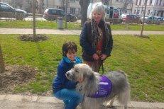 """Kratu, câinele abandonat din România, ajuns vedetă în Marea Britanie. """"O dată în viaţă se întâmplă să întâlneşti un astfel de câine"""""""