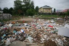 """Cercetătorii au descoperit din greşeală o enzimă-mutant care """"se hrăneşte"""" cu deşeuri din plastic"""