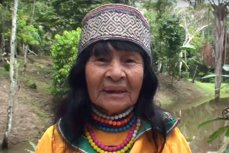 """Un canadian a fost linşat de un trib amazonian, după o acuzaţie privind uciderea unei tămăduitoare locale. Turistul se afla acolo pentru a deveni expert în """"ştiinţa plantelor halucinogene"""""""
