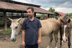 Şi caii se împuşcă, nu-i aşa? Simi şi Ioana au răspuns NU. Refugiul Caii Lupilor, locul unde CAII fără NICIO ŞANSĂ devin CAMPIONI