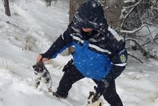 Jandarmii montani din Gorj POVESTESC pe Facebook cum au salvat ŞASE CĂŢELUŞI din zăpadă. Mama puilor le-a ARĂTAT unde erau