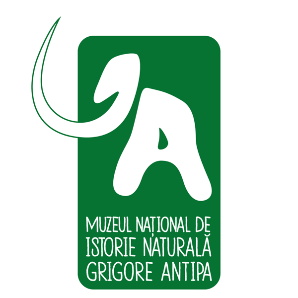 Muzeul Antipa are o nouă identitate vizuală şi va căuta un nou slogan cu ajutorul publicului