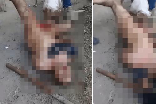 """Bărbat castrat de un pitbull, după ce ar fi violat o femeie / A fost ţinut de cinci """"justiţiari"""", în timp ce animalul feroce l-a lăsat fără """"bărbaţie"""""""