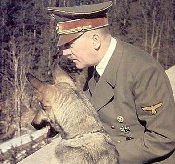 Naziştii au încercat să înveţe câinii să vorbească şi să citească şi susţineau că unul chiar putea să dezbată subiecte religioase