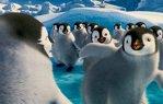"""Filmul """"Happy Feet 2"""" - lider în box office-ul românesc de weekend"""