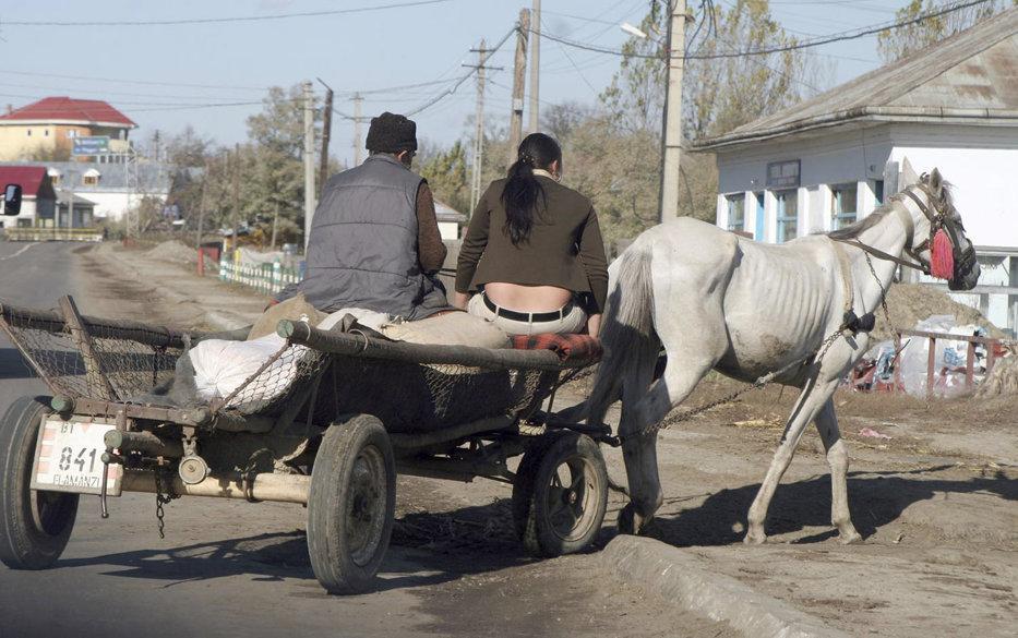 Oraşul din România cu mai multe căruţe decât maşini. Doar 1 din 16 oameni deţine un autoturism