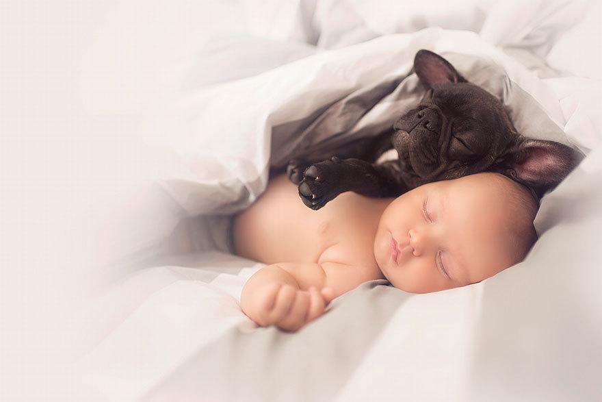 De ce este bine să-ţi laşi copilul să crească în compania unui căţel. Afecţiunea gravă de care patrupezii îi protejează pe micuţi