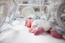 Naşterile premature, cauzate de bacteriile contractate de femei în timpul actului sexual