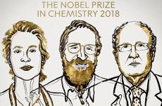 Premiul Nobel pentru chimie 2018, pentru metode care pot contraataca MALADIILE AUTOIMUNE