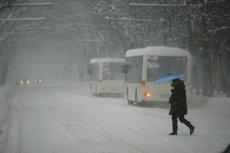 VREMEA. Ce spun meteorologii ANM despre ninsorile din martie şi care sunt efectele asupra culturilor agricole