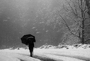 VREMEA. Cod galben de ploaie, ninsoare şi vânt, în 18 judeţe din jumătatea de vest a ţării