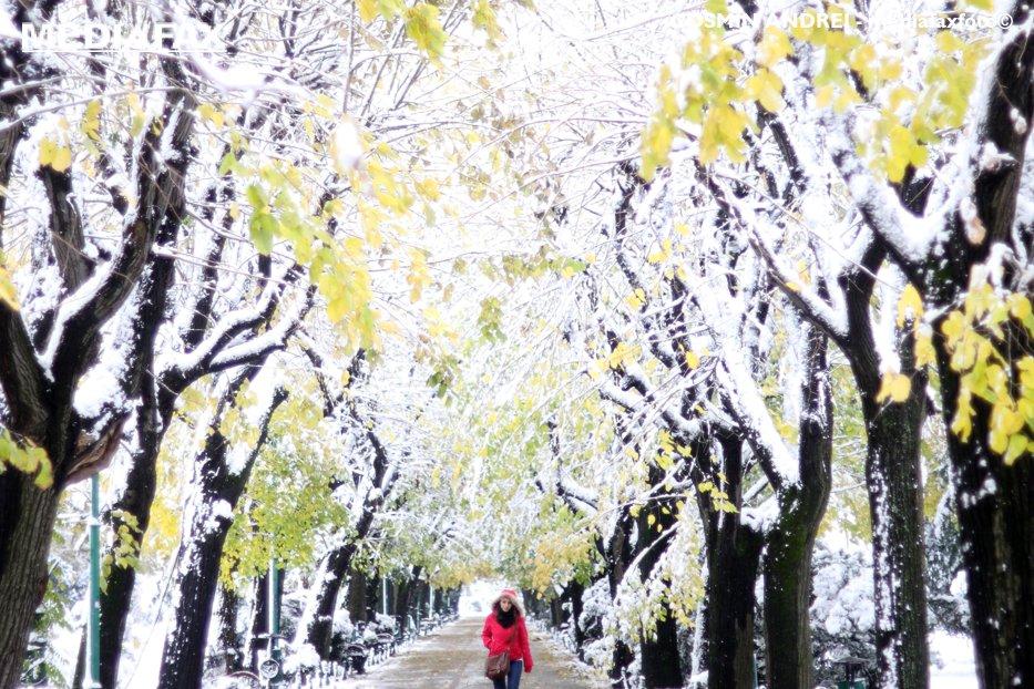 Prognoza ANM în România. VREMEA în următoarele 2 săptămâni. Zonele în care temperaturile vor ajunge la 12-13 grade