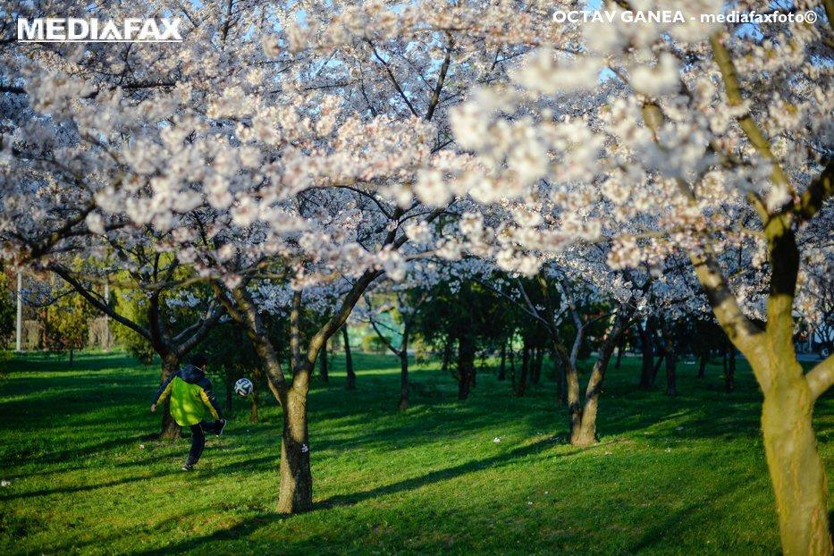 VREMEA ANM în România. Prognoza METEO pentru următoarele trei luni
