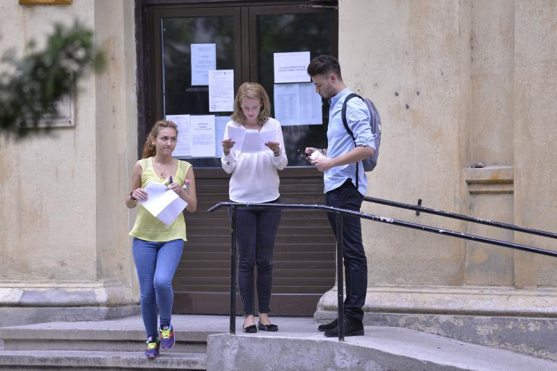 """EVALUARE NAŢIONALĂ 2017 ROMÂNĂ. SUBIECTE şi BAREM la română, la evaluarea naţională: poezia """"Ploaia"""" de Magda Isanos"""