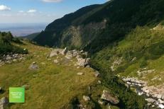 România, treci pe verde! Pe 19 noiembrie am dat startul reîmpăduririi României