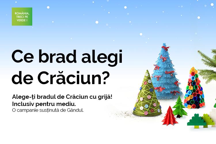 Bradul de Crăciun, mai mult decât un ornament. Cum îl putem alege cu responsabilitate