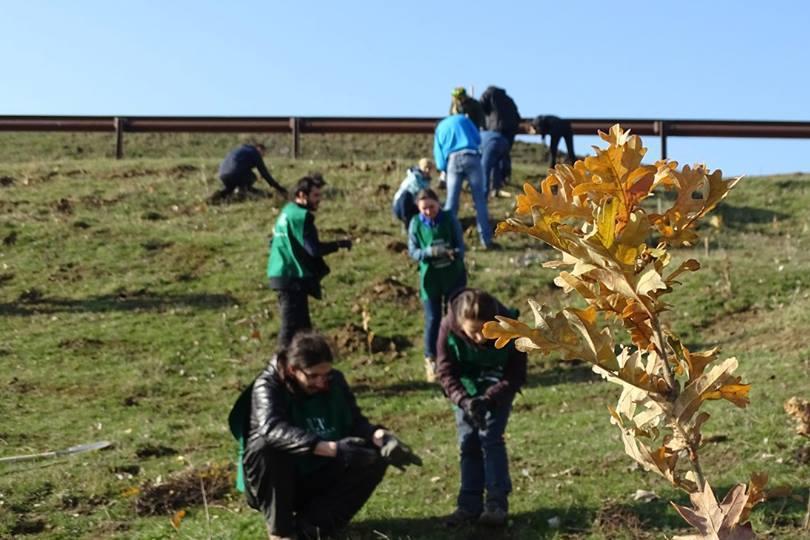 Prima acţiune de împădurire din 2017. 300 de voluntari vor planta 5.000 de copaci la Siliştea Gumeşti
