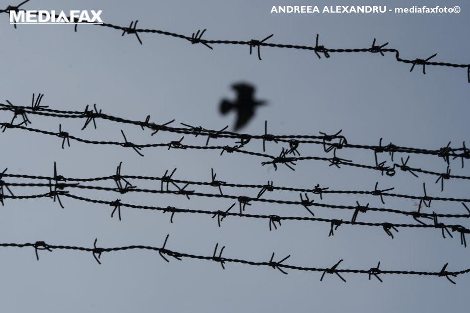 Un om moare la fiecare 3 zile în închisorile României. Imaginea unui sistem nereformat de peste 25 de ani
