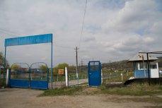 #DIZGRAŢIAŢII. Agricultorii din închisori: povestea deţinuţilor de la ferma Penitenciarului Târgu Jiu