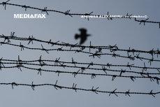 Singura închisoare din România care funcţionează pe model norvegian. Ce condiţii au deţinuţii