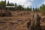 Varga: Proprietarii de păduri, plătiţi să le menţină din vânzarea certificatelor de emisii CO2