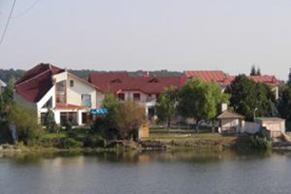 Perchezitii la persoane care au spart mai multe locuinte, printre care si casa lui Theodor Stolojan
