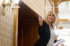 Elena Udrea a scăpat de arestul la domiciliu. Fostul ministru va fi cercetat sub control judiciar