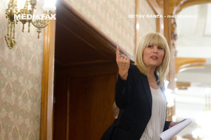 """Elena Udrea, atac dur la Dragnea: """"Cât să fii de ipocrit? Cât de frică să îţi fie de dosarele pe care le ai?"""""""