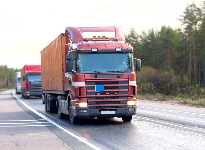 Poliţiştii bulgari au oprit un camion românesc în trecătoarea Republica. Ce au descoperit când şoferul a deschis uşa