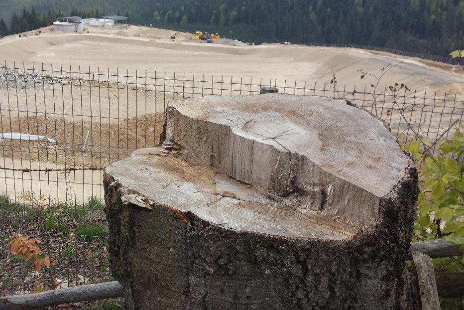 Curtea de Apel Cluj A ANULAT decizia de construcţie a unei gropi de gunoi în vârful muntelui, chiar în inima Bucovinei. Campania Gândul care a schimbat lucrurile