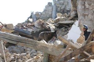 Italia, devastată de cutremur. GALERIE FOTO