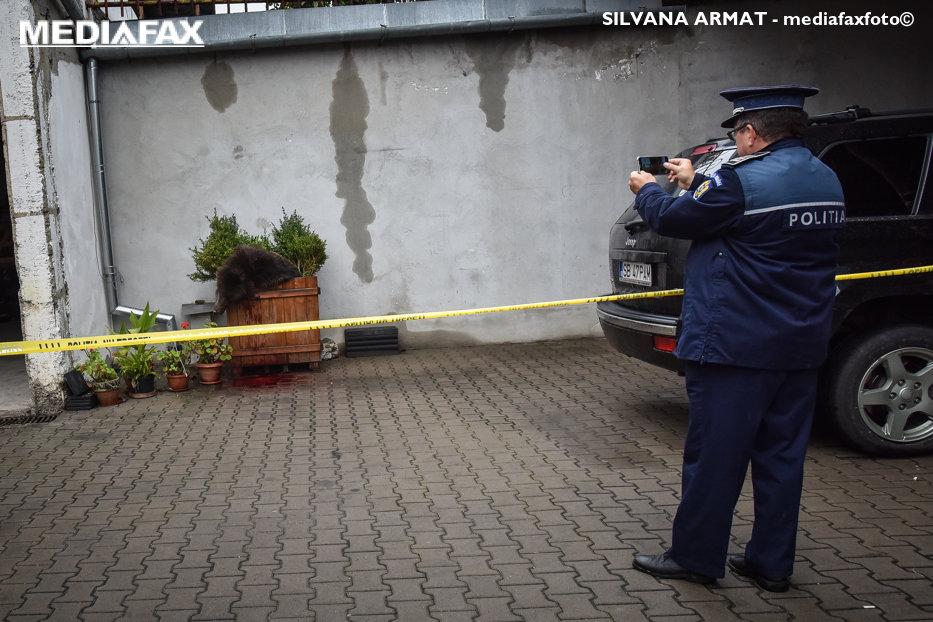"""Dovada incompetenţei în cazul uciderii ursului din Sibiu. Godină povesteşte momentul incredibil: """"Pare un film cu proşti. Film nu e. Cu proşti da"""""""