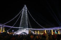 Oraşul din România care se laudă cu cel mai mare brad de Crăciun din ţară: va avea 42 de metri