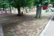 Cine plăteşte reabilitarea Parcului Central din Cluj, după Untold. Costă 300.000 de lei