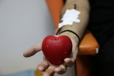 Alertă la centrele de transfuzii. Sângele, verificat suplimentar după ce şase oameni au murit din cauza virusului West Nile